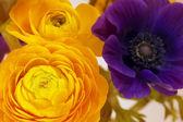 цветы искусства крупным планом. цветочный фон — Стоковое фото