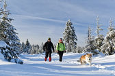 Couple hiking with dog in winter mountains — Stock Photo