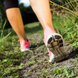 Walking or running legs in forest, summer nature activity — Stock Photo