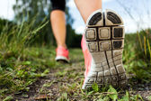Walking or running legs in forest, adventure and exercising — Stock Photo