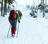 Hiking on snow trail in winter — Stock Photo