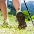 Nordic walking legs in mountains — Stock Photo #14858909
