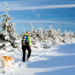 Winter hiking with dog - Zdjęcie stockowe