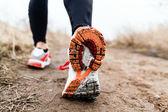 Wandelen of hardlopen benen sportschoenen — Stockfoto