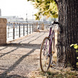 Stock Photo: Road bicycle on city street