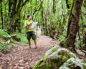 Hiker with map in forest — Stock Photo