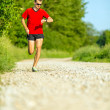 Постер, плакат: Man trail running on country road