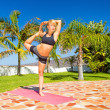 Woman training yoga natarajasana — Stock Photo #47841217