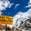 Mount Everest signpost Himalayas — Stock Photo #48305855