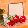 Beautiful roses with banner add — Foto de Stock
