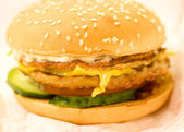 Cheese burger - American cheese chicken burger with fresh salad — Stock Photo