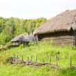 Rural cottage. - 图库照片