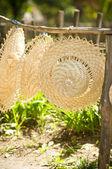 Sombreros de paja colgando en una valla — Foto de Stock