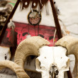 Shamanic animal and amulet - Stock Photo
