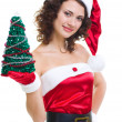 Beautiful young woman in Santa Claus clothes on white background. — Stock Photo