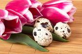 Paaseieren en lentebloemen — Stockfoto