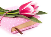 Pink notebook and tulips on the white background — Stock Photo
