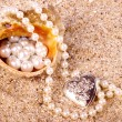 Beautiful exotic shell and pearl — Stock Photo #26572939