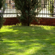 Green lawn behind a fence — Foto Stock