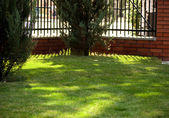 Green lawn behind a fence — Stock Photo