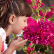 Little girl smelling flowers — Stock Photo