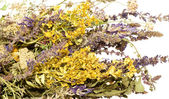 Bouquet of dried wildflowers — Stock Photo