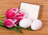 Banner add with Easter quail eggs and spring flowers — Stock Photo