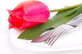 Table decoration with tulip for special festivities — Stock Photo