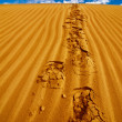 Stock Photo: Lonely footprints on desert sand dune under blue sky