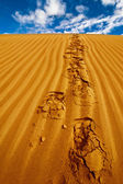 Lonely footprints on desert sand dune under blue sky — Stock fotografie