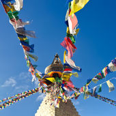 Buddhist Shrine Boudhanath Stupa. Nepal, Kathmandu — Stock Photo