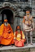 Sadhu Men, Blessing In Pashupatinath Temple — Stock Photo