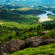 Tea plantation landscape panorama with river at sunny day. India — Stock Photo