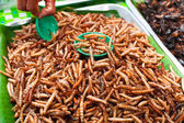 Thai food at market. Fried insects mealworms for snack — Stock Photo