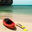 Tropical beach landscape with red canoe boat at ocean beach - Stockfoto