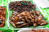 Thai food at market. Fried insects grasshopper for snack — Stock Photo