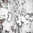 Stock Photo: Old cracked paint on wooden wall. Grunge background