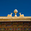 Tibetan Monastery Gates.  India, Ladakh — Stock Photo