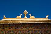 Tibetan Monastery Gates. India, Ladakh — Stockfoto