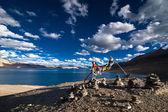 Buddhist praying flags at Tso Moriri Lake. India — Stok fotoğraf
