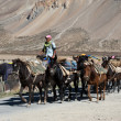Stock Photo: Himalayherdsmen leads horses caravan