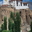 Buddhist heritage, Lamayuru monastery at Hymalaya — Stock Photo