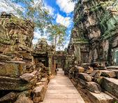 Ta Prohm temple at Angkor Wat complex, Siem Reap, Cambodia — Stock Photo