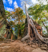 Ta Prohm temple at Angkor Wat complex, Siem Reap, Cambodia — Stock Photo