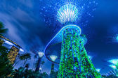 Futuristic view of amazing illumination at Garden by the Bay in Singapore — Stock Photo