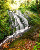 Jungle landscape with small waterfall, Thailand — Foto de Stock