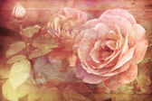 Grunge texture with floral background in vintage style. Pink roses flowers — Stock Photo
