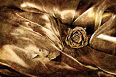 Vintage background: Dry rose on satin — Stock Photo