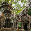 Ta Prohm temple with giant banyan tree at Angkor Wat complex, Siem Reap, Cambodia — Stock Photo #45899767