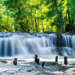Tropical rainforest landscape with Kulen waterfall in Cambodia — Stock Photo #45899867